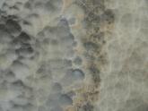 Натуральный оникс Блэк Клауд (Onice Black Cloud, Италия)